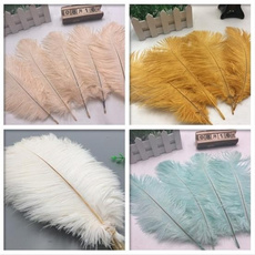 Beautiful, party, fetaher, naturalostrichfeather