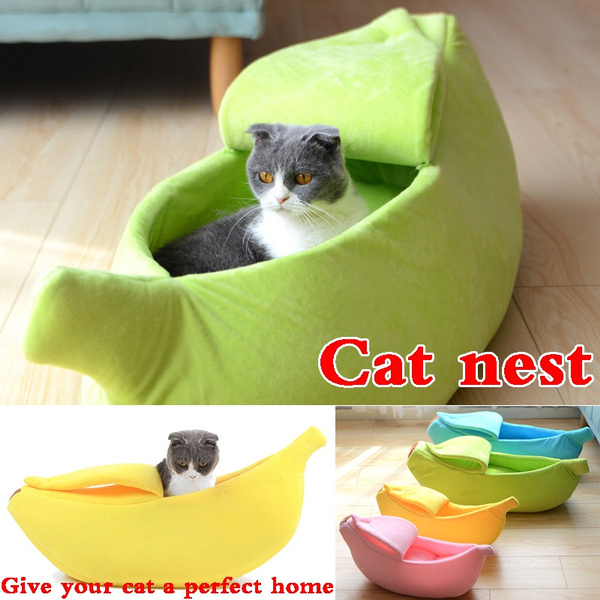 Winter, Cat Bed, Pets, house