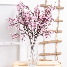 decoration, Flowers, Home & Living, Home