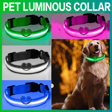 led, fluorescence, Pets, lights