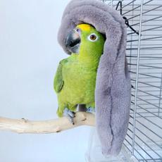 parrotblanket, Winter, Parrot, Animal