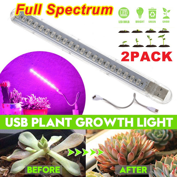 growinglight, Plants, Flowers, led