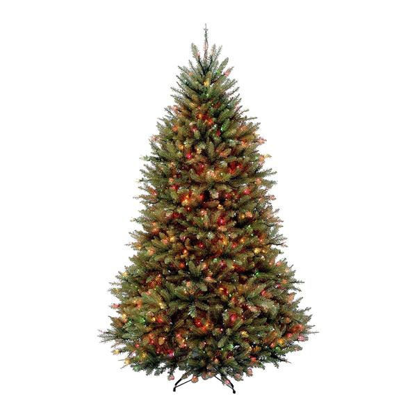 balsam, Dunhill, Tree, Christmas
