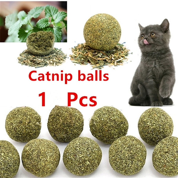Pets, Toy, Pet Products, catnip