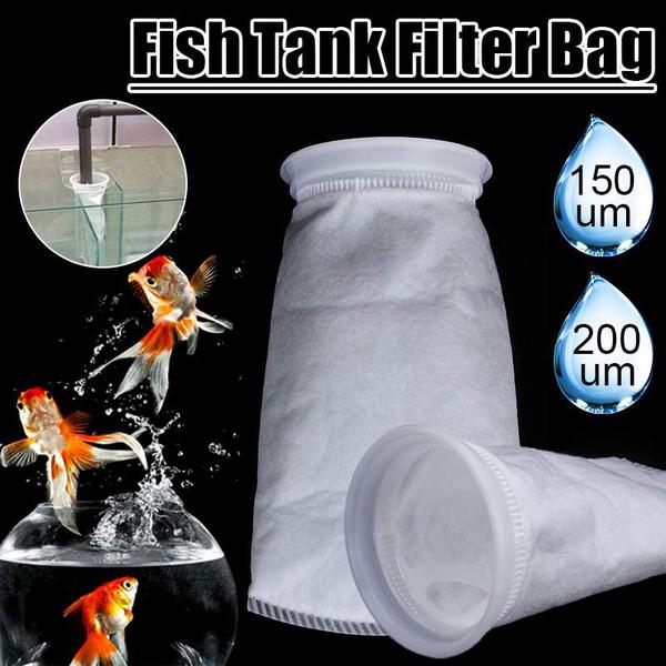 fishaquarium, Tank, fish, Socks