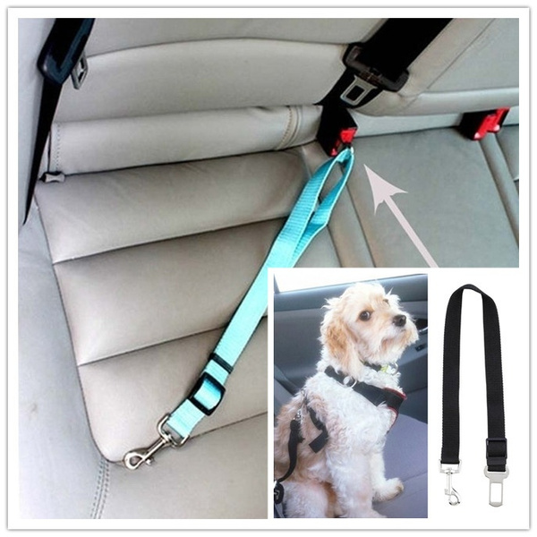 Fashion Accessory, vehiclesafetyseatbelt, safetyrope, petaccessorie