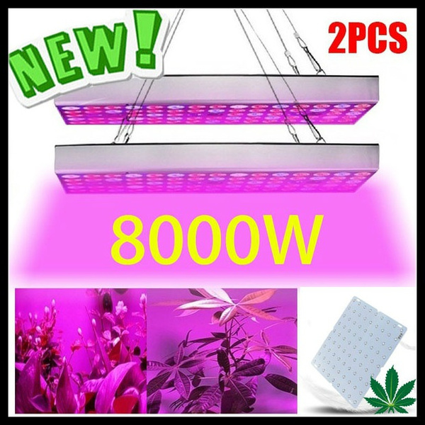 plantlamp, Plants, Indoor, Garden