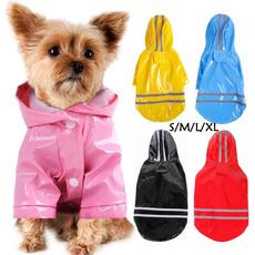 chihuahua, dog coat, petraincoat, Pets