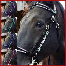 horse, horseriding, headstall, breastplate