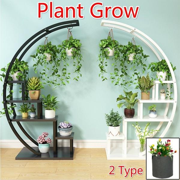 Home & Kitchen, Plants, Flowers, Gardening Tools