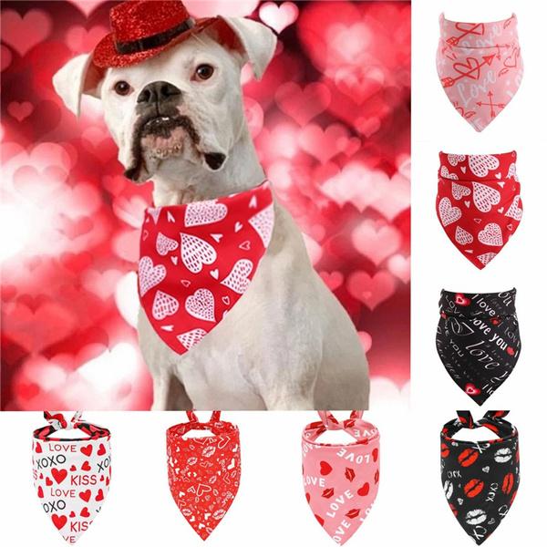 Fashion Accessory, Fashion, Dog Collar, dogscarf