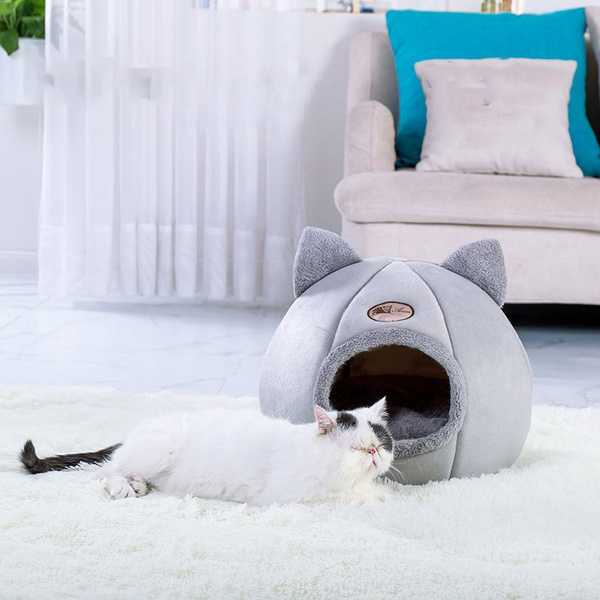 cathouse, warmcatlitter, Indoor, Winter
