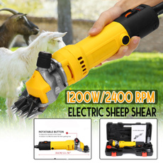 Sheep, Wool, Electric, Farm