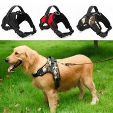 Vest, petharne, Fashion, walkingdog