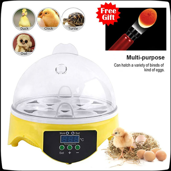 Mini, Farm, minieggincubator, incubator