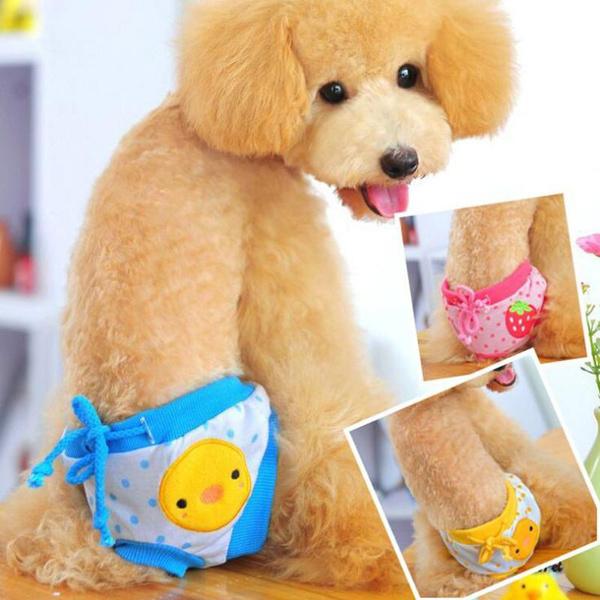 petdiaper, dogunderwearbrief, Shorts, cute