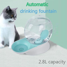 catwaterfountain, Pets, pussy, Dogs