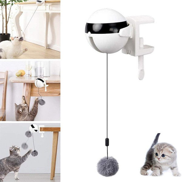 dogtoy, cattoy, Toy, Electric