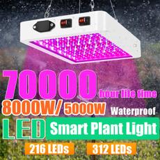lightbulbsled, led, growlightsforplant, lights