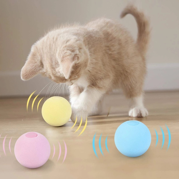 toyball, cattoy, Toy, petcat
