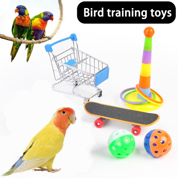 birdclothe, Toy, parrottraining, Gifts