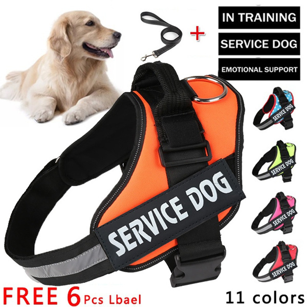 Vest, Adjustable, servicedogvest, Waterproof