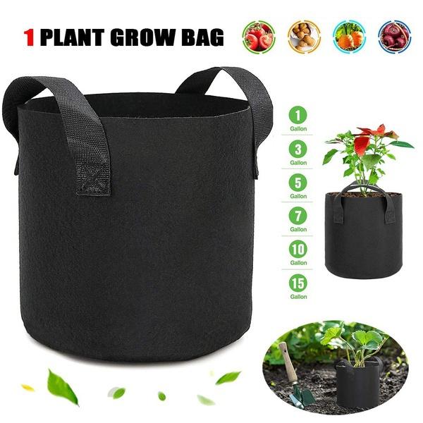 Plants, plantbag, Handles, growbags5gallon
