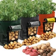 vegetabletool, flowerpot, Garden, plantcontainer
