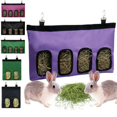 rabbitguineapig, rabbit, Animal, Mascotas