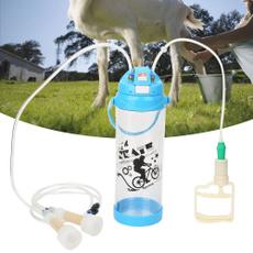 Sheep, Head, Electric, cow