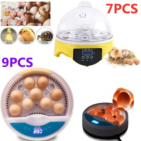 incubator, incubatortray, incubatorkit, Mini
