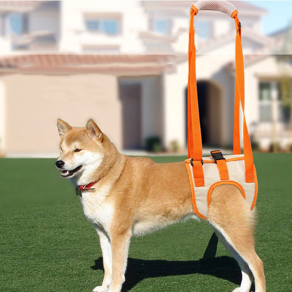 Pets, dogliftharnes, Tool, Harness
