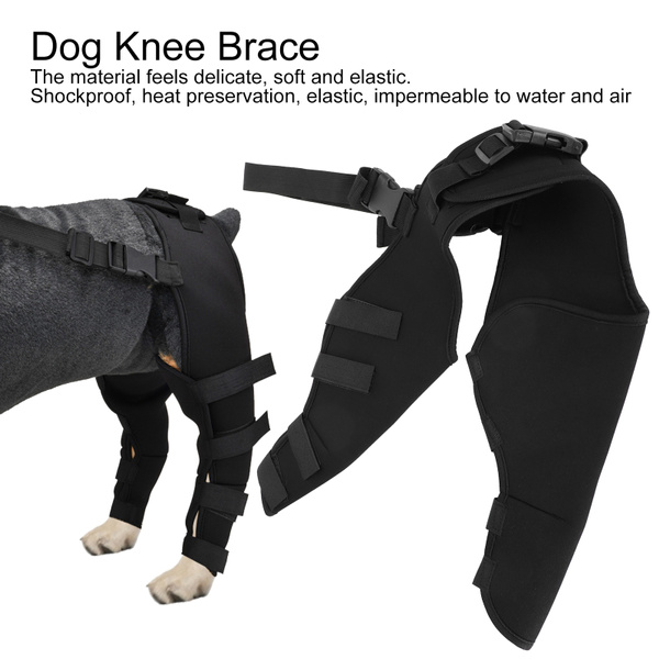 petkneepadsforhindleg, dogkneebrace, hind, Pets