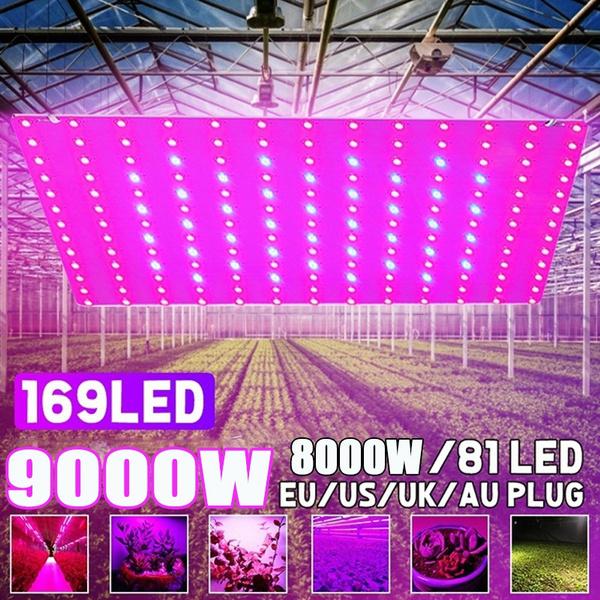 Plants, Indoor, led, ledgrowtent