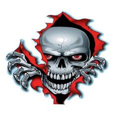 Car Sticker, Skeleton, skull, Waterproof
