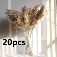 driedpampasgra, Home & Kitchen, flowerbunch, Flowers