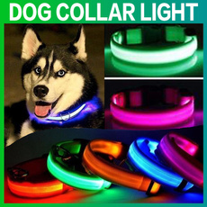led, dogcollarlight, Pets, lights