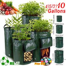 Plants, Gardening, Garden, potatobag