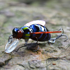 crankbait, eye, M&M, carp