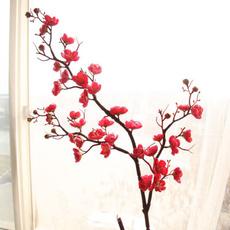 Home & Kitchen, Flowers, Garden, cm