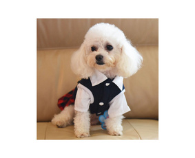School, Fashion, allinone, Pets
