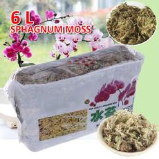 organicfertilizer, Nutrition, organic, orchidfertilizer