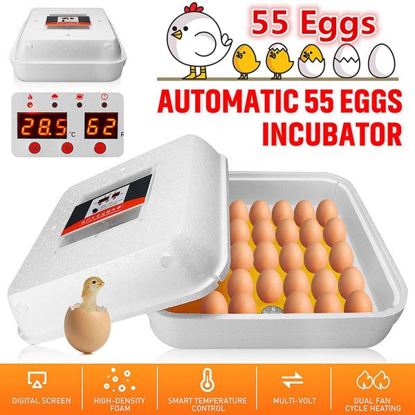 automaticpoultryincubator, machinehatcher, broodmachinehatcher, automaticegghatcher