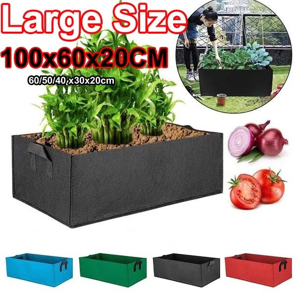 Box, gardenpatio, Plants, Garden
