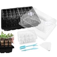 autolisted, sturdy, tray, seedling