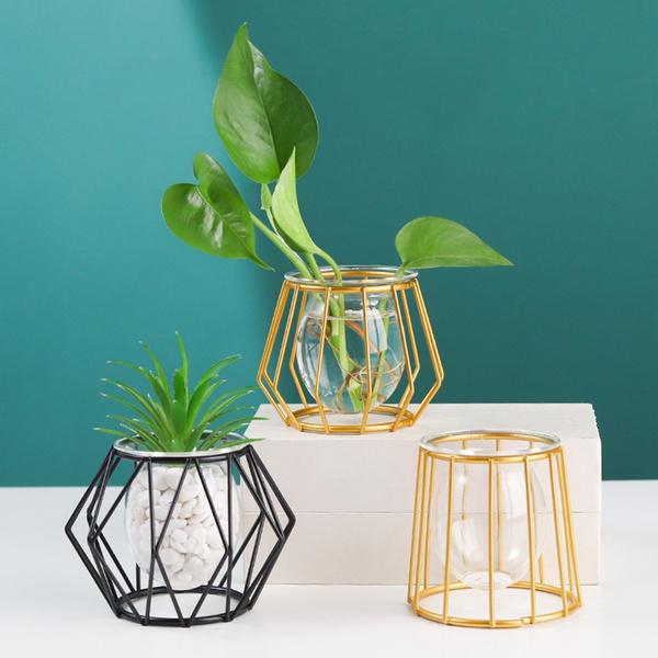 Home & Kitchen, glassplanter, hydroponicvase, Garden