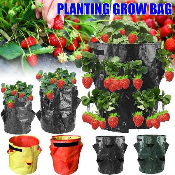 vegetabletool, flowerpot, Outdoor, Garden