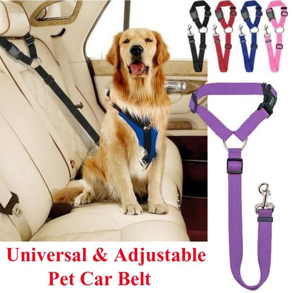 Fashion Accessory, seatbelt belt, puppystuff, Dogs