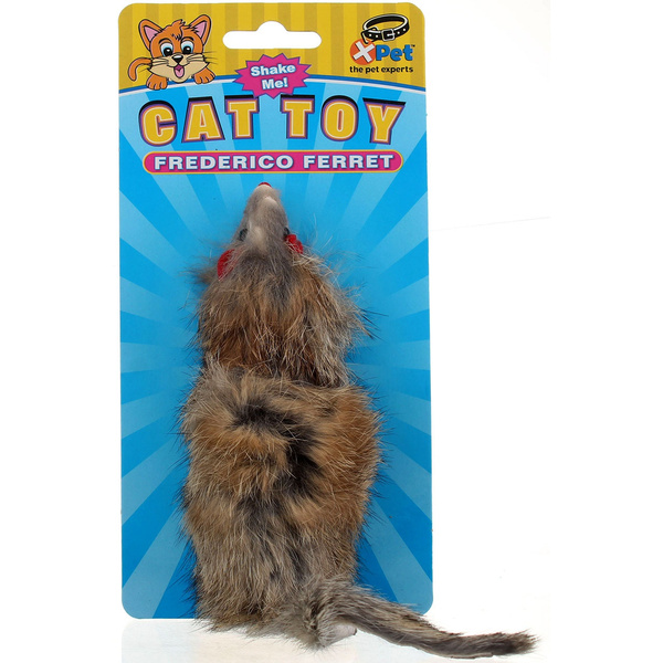 Toy, petaccessorie, Cats