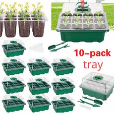 Box, Plants, Flowers, Gardening